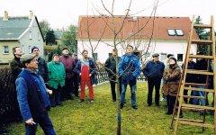 Baumschnittlehrgang